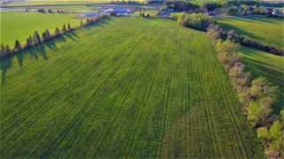 Photo 8: Lot Junction Road in Middleton: 400-Annapolis County Commercial for sale (Annapolis Valley)  : MLS®# 201920430