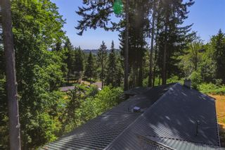 Photo 11: 2552 Rainbow Rd in : CR Campbell River North House for sale (Campbell River)  : MLS®# 883603