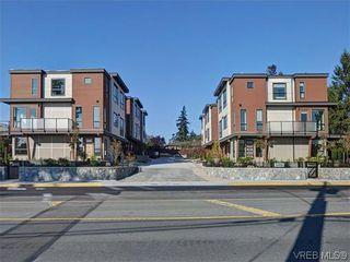 Photo 16: 8 1060 Tillicum Rd in VICTORIA: Es Kinsmen Park Row/Townhouse for sale (Esquimalt)  : MLS®# 719686