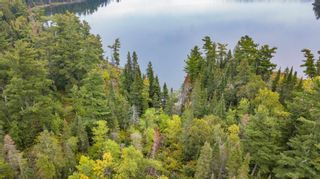 Photo 12: Lot 8 Five Point Island in South of Kenora: Vacant Land for sale : MLS®# TB212085