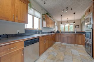 Photo 17: 4815 55 Street: Redwater House for sale : MLS®# E4203292