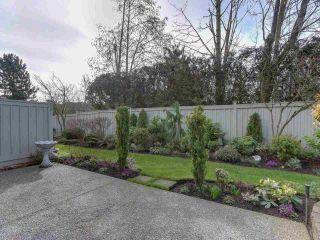 """Photo 29: 36 15860 82 Avenue in Surrey: Fleetwood Tynehead Townhouse for sale in """"OAK TREE"""" : MLS®# R2554842"""