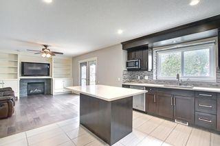 Photo 17: 23 Castlefall Way NE in Calgary: Castleridge Detached for sale : MLS®# A1141276