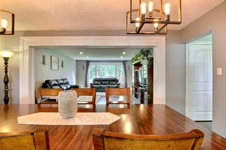 Photo 13: 5314 57 Avenue: Olds Detached for sale : MLS®# A1146760