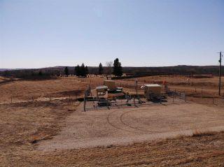 Photo 8: SE-36-42-10-W4 Bitzer Estates: Rural Flagstaff County Rural Land/Vacant Lot for sale : MLS®# E4237924