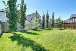 Photo 38: 317 Ranch Close: Strathmore Detached for sale : MLS®# A1128791