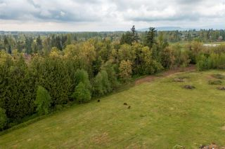 Photo 13: 28629 58 AVENUE in Abbotsford: Bradner House for sale : MLS®# R2572579