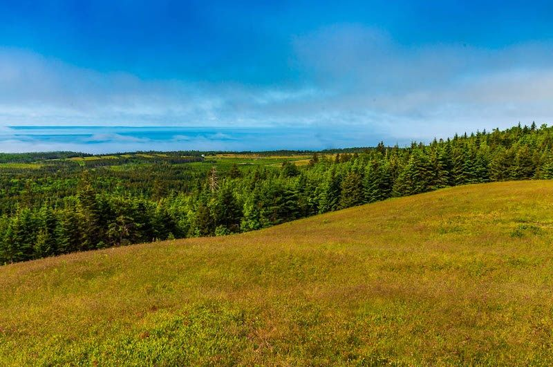 Main Photo: Woods Mountain Road in Parrsboro: 102S-South Of Hwy 104, Parrsboro and area Vacant Land for sale (Northern Region)  : MLS®# 202107896