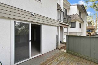 """Photo 21: 36 2830 BOURQUIN Crescent in Abbotsford: Central Abbotsford Townhouse for sale in """"Abbotsford Court"""" : MLS®# R2542895"""