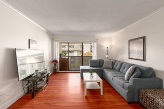 Photo 2: 317 1210 PACIFIC Street in Coquitlam: North Coquitlam Condo for sale : MLS®# R2618063