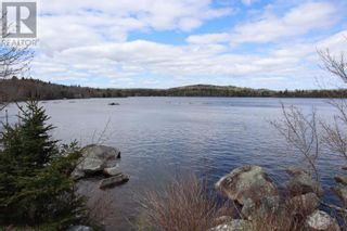 Photo 12: Lot St Catherines River Road in Port Joli: Vacant Land for sale : MLS®# 202111302