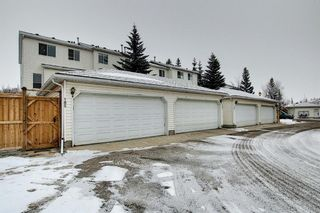 Photo 43: 185 Citadel Drive NW in Calgary: Citadel Row/Townhouse for sale : MLS®# A1066362