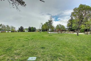Photo 34: 132 Mt Allan Circle SE in Calgary: McKenzie Lake Detached for sale : MLS®# A1110317