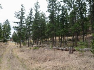 Photo 8: 5511 BARNHARTVALE ROAD in Kamloops: Barnhartvale Lots/Acreage for sale : MLS®# 161226
