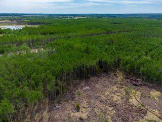 Photo 11: TWP 624 Rge Rd 423: Rural Bonnyville M.D. Rural Land/Vacant Lot for sale : MLS®# E4227702