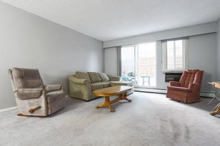 """Photo 3: 103 12096 222 Street in Maple Ridge: West Central Condo for sale in """"Canuck Plaza"""" : MLS®# R2521052"""