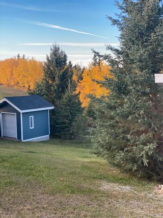 Photo 11: 252, 57201 Range Road 102: Rural St. Paul County Rural Land/Vacant Lot for sale : MLS®# E4264298