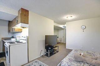 Photo 41: 311 TARALAKE Terrace NE in Calgary: Taradale Detached for sale : MLS®# A1128054