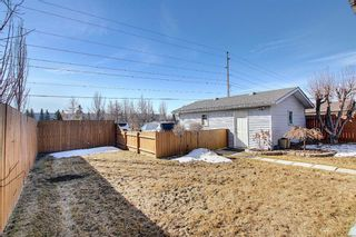 Photo 31: 2735 41A Avenue SE in Calgary: Dover Detached for sale : MLS®# A1082554