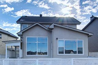 Photo 29: 141 SADDLEMEAD Road in Calgary: Saddle Ridge Detached for sale : MLS®# A1052360