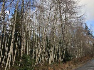 Photo 1: LT 13 PRENDERGAST ROAD in COURTENAY: CV Courtenay West Land for sale (Comox Valley)  : MLS®# 779740