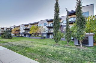 Photo 28: 117 15233 1 Street SE in Calgary: Midnapore Apartment for sale : MLS®# A1040196