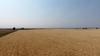 Photo 1: : Rural Foothills M.D. Land for sale : MLS®# C4137604