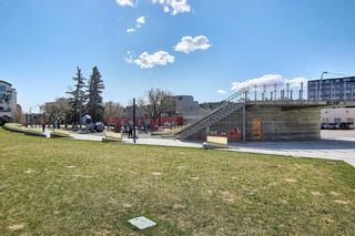 Photo 39: 405 1225 15 Avenue SW in Calgary: Beltline Apartment for sale : MLS®# A1100145