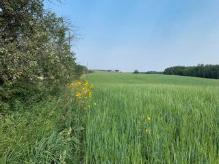 Photo 4: Hwy 616 RR 10: Rural Wetaskiwin County Rural Land/Vacant Lot for sale : MLS®# E4258071
