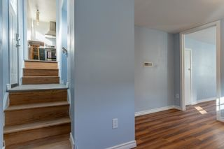 Photo 28: 12006 48 Street in Edmonton: Zone 23 House for sale : MLS®# E4265863