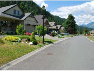 Photo 4: 5 14550 MORRIS VALLEY Road: Land for sale in Harrison Mills: MLS®# R2535153
