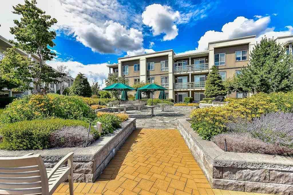 Main Photo: 233 15850 26 AVENUE in Surrey: Grandview Surrey Condo for sale (South Surrey White Rock)  : MLS®# R2090464
