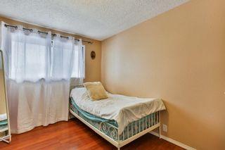 Photo 17: 35 Abergale Close NE in Calgary: Abbeydale Detached for sale : MLS®# C4267496