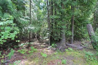 Photo 3: Lot 96 Crowfoot Drive in Anglemont: North Shuswap Land Only for sale (Shuswap)  : MLS®# 10158355