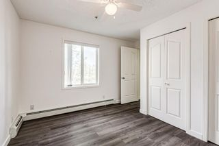 Photo 14: 3209 1620 70 Street SE in Calgary: Applewood Park Apartment for sale : MLS®# A1116068