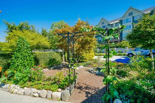 """Photo 38: 721 COLBORNE Street in New Westminster: GlenBrooke North House for sale in """"Glenbrook North"""" : MLS®# R2609816"""