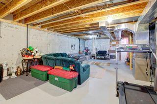 Photo 18: 10 TARALEA Bay NE in Calgary: Taradale Semi Detached for sale : MLS®# A1013270