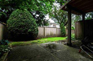 Photo 19: 2 1195 FALCON Drive in Coquitlam: Eagle Ridge CQ Townhouse for sale : MLS®# R2094331