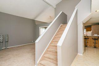Photo 23:  in Edmonton: Zone 29 House for sale : MLS®# E4248358