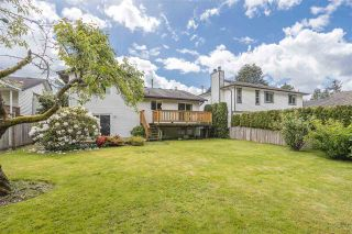 Photo 6: 21355 THORNTON Avenue in Maple Ridge: West Central House for sale : MLS®# R2585991