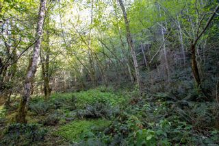 Photo 5: 8803 Canal Rd in : GI Pender Island Land for sale (Gulf Islands)  : MLS®# 874547