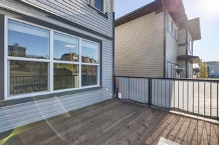Photo 30: 236 Hillcrest Drive SW: Airdrie Detached for sale : MLS®# A1153882
