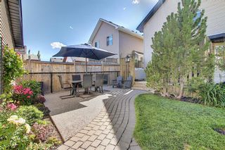 Photo 46: 44 CRANBERRY Way SE in Calgary: Cranston Detached for sale : MLS®# A1029590