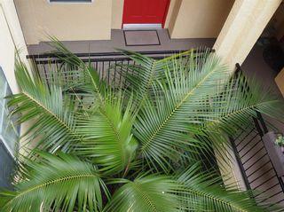 Photo 10: CARMEL VALLEY Condo for sale : 1 bedrooms : 3835 Elijah Ct #535 in San Diego