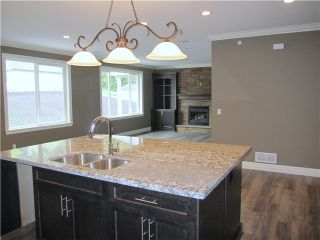 Photo 4: 10458 245TH Street in Maple Ridge: Albion House for sale : MLS®# V1078579