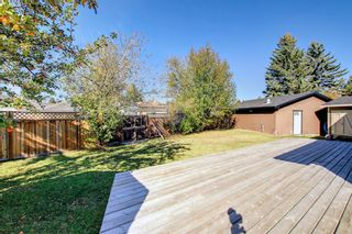 Photo 46: 1931 Pinetree Crescent NE in Calgary: Pineridge Detached for sale : MLS®# A1153335