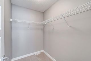 Photo 32: 292 Nolancrest Heights NW in Calgary: Nolan Hill Detached for sale : MLS®# A1130520