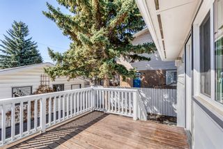 Photo 43: 1131 Lake Sylvan Drive SE in Calgary: Lake Bonavista Detached for sale : MLS®# A1094428