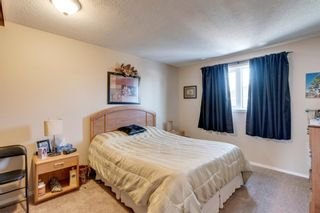 Photo 10: 10 Abalone Crescent NE in Calgary: Abbeydale Detached for sale : MLS®# A1072255