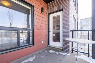 Photo 37: 306 10518 113 Street in Edmonton: Zone 08 Condo for sale : MLS®# E4228928